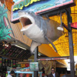 seaport aquarium wildwood rentals